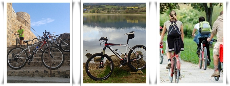 Alquiler de Bicicletas en Cofrentes