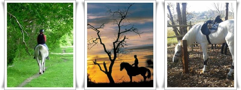 Rutas a caballo guiadas