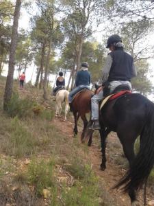 rutas a caballo en requena