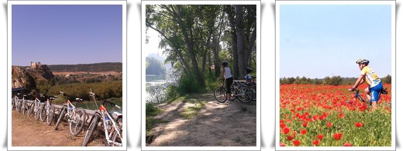 Rutas en Bike
