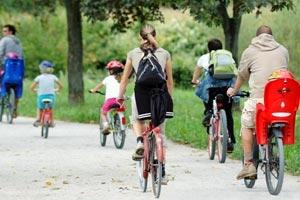 Comemillas en familia: Bike, Senderismo y Quad en Cofrentes